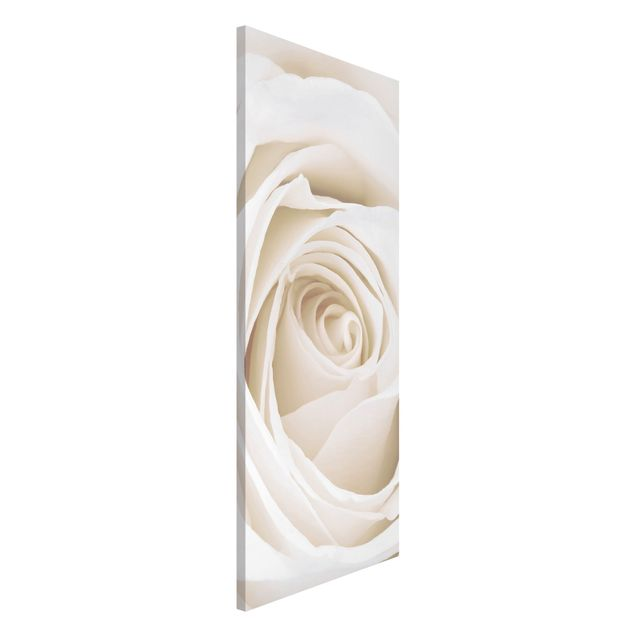 Magnettafel - Pretty White Rose - Blumenbild Memoboard Panorama Hoch
