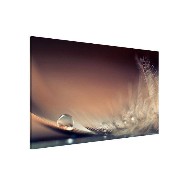 Magnettafel - Story of a Waterdrop - Memoboard Querformat