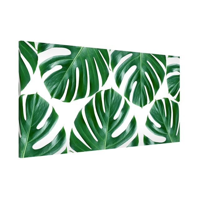 Magnettafel - Tropische grüne Blätter Monstera - Memoboard Panorama Querformat