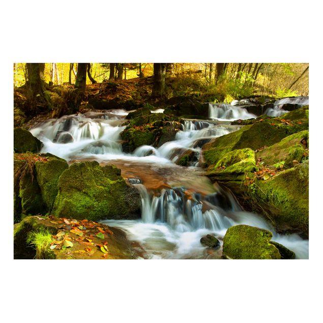Magnettafel - Wasserfall herbstlicher Wald - Memoboard Quer