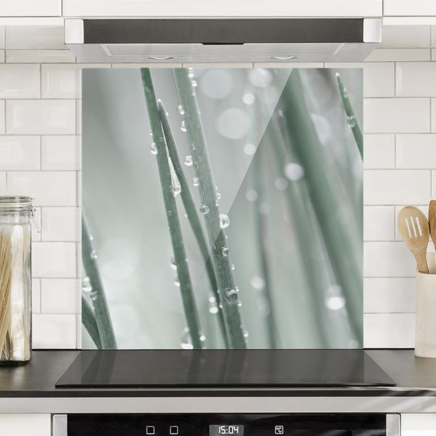 Spritzschutz Glas - Makroaufnahme Wasserperlen am Gras - Quadrat 1:1