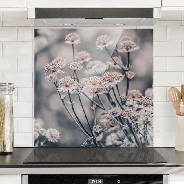 Spritzschutz Glas - Mystischer Blütenstrauch - Quadrat 1:1