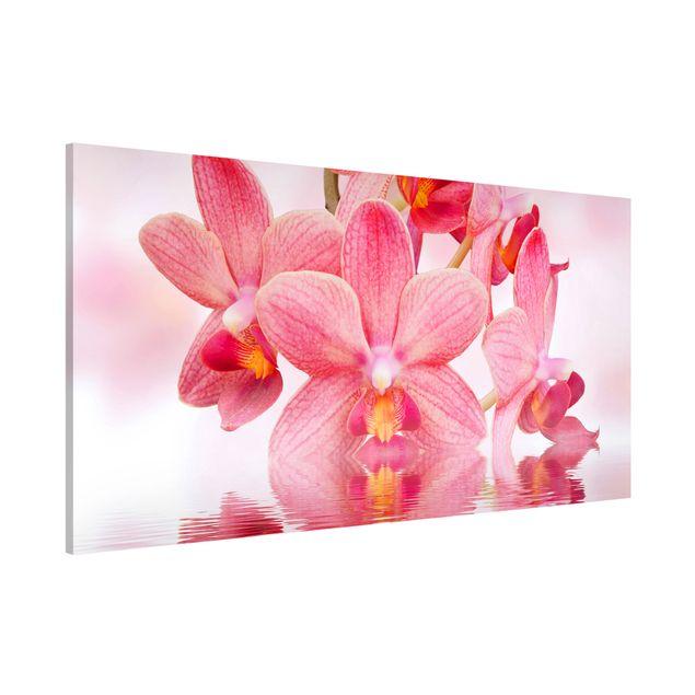 Magnettafel - Rosa Orchideen auf Wasser - Blumenbild Memoboard Panorama Quer