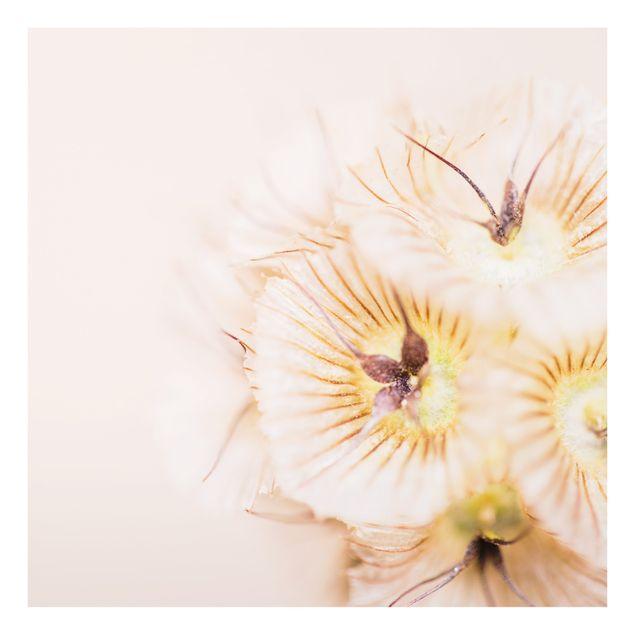 Spritzschutz Glas - Pastellfarbener Blütenstrauß - Quadrat 1:1