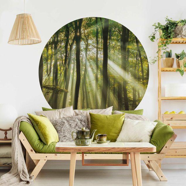 Runde Tapete selbstklebend - Sonnentag im Wald