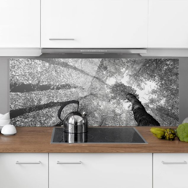 Spritzschutz Glas - Bäume des Lebens II - Panorama Quer