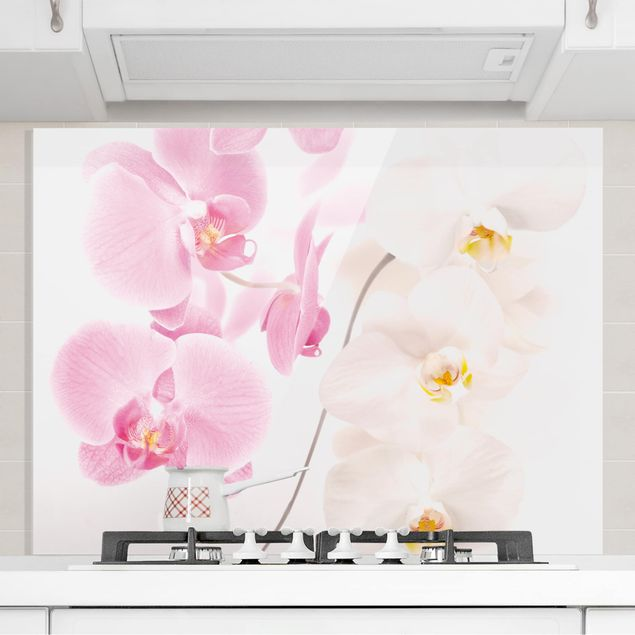 Spritzschutz Glas - Delicate Orchids - Quer 4:3