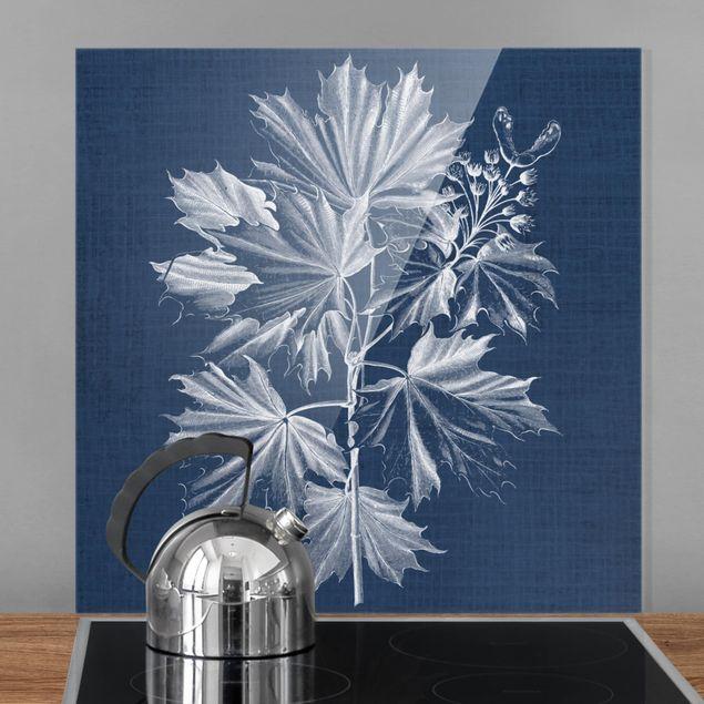 Spritzschutz Glas - Denim Pflanzenstudie V - Quadrat 1:1