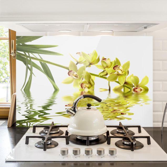 Spritzschutz Glas - Elegant Orchid Waters - Quer 3:2