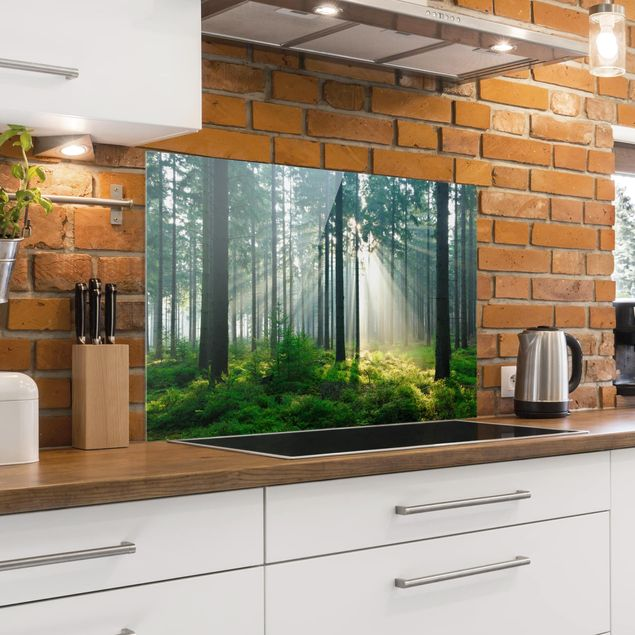 Spritzschutz Glas - Enlightened Forest - Quer 3:2