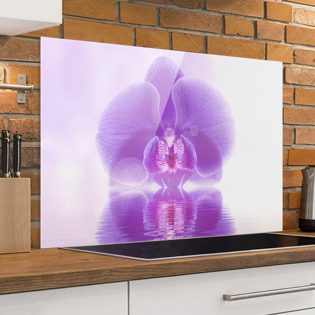 Spritzschutz Glas - Lila Orchidee auf Wasser - Quer 3:2