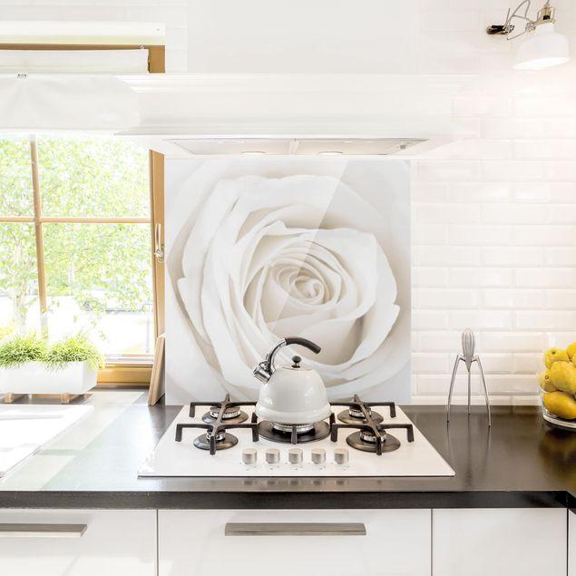 Spritzschutz Glas - Pretty White Rose - Quadrat 1:1