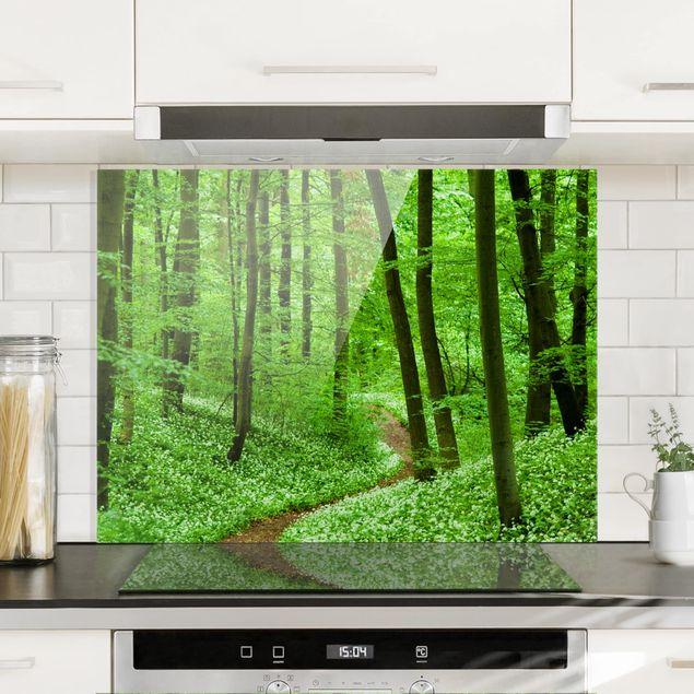 Spritzschutz Glas - Romantischer Waldweg - Quer 4:3