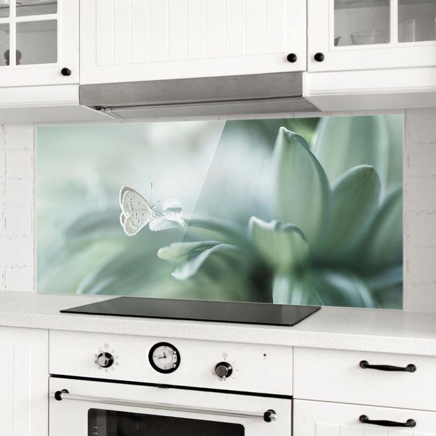 Spritzschutz Glas - Schmetterling und Tautropfen in Pastellgrün - Panorama