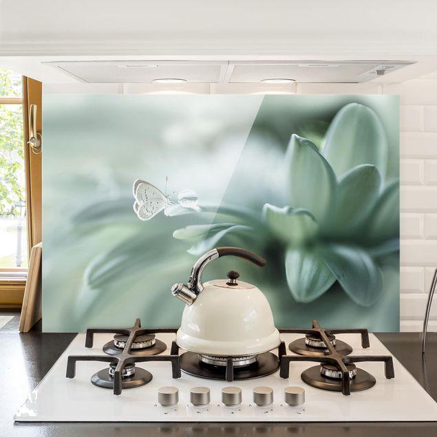 Spritzschutz Glas - Schmetterling und Tautropfen in Pastellgrün - Querformat 2:3