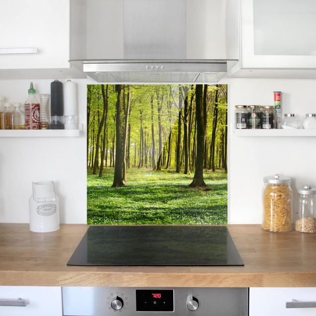 Spritzschutz Glas - Waldwiese - Quadrat 1:1