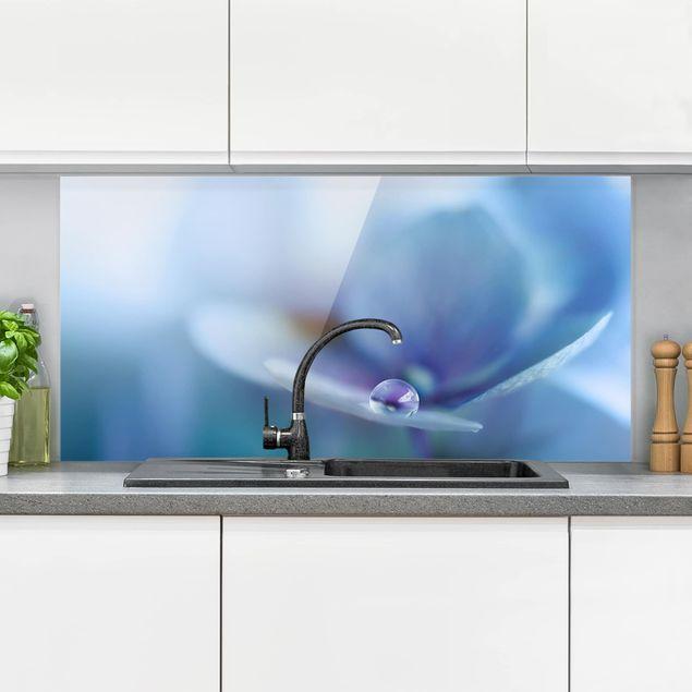 Spritzschutz Glas - Wassertropfen Hortensienblüte - Querformat 1:2