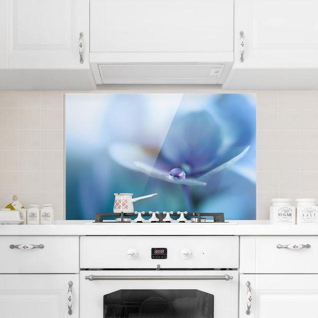 Spritzschutz Glas - Wassertropfen Hortensienblüte - Querformat 2:3