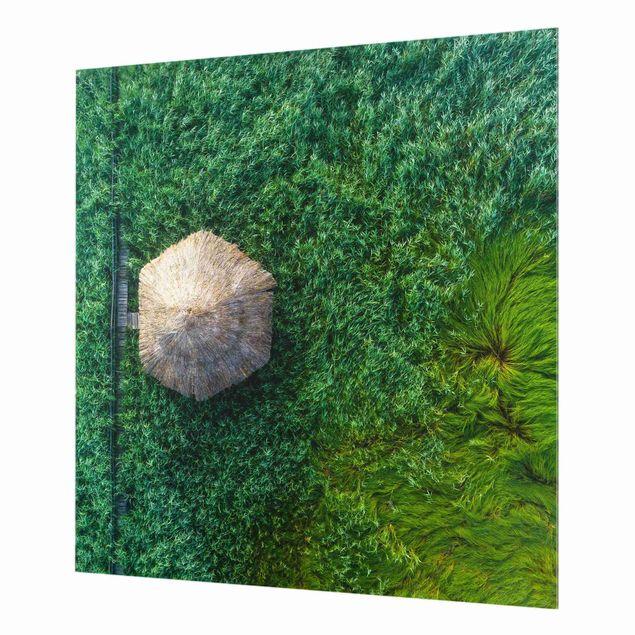 Spritzschutz Glas - Strohhütte im hohen Schilf - Quadrat 1:1