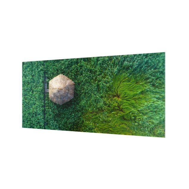 Spritzschutz Glas - Strohhütte im hohen Schilf - Querformat 2:1