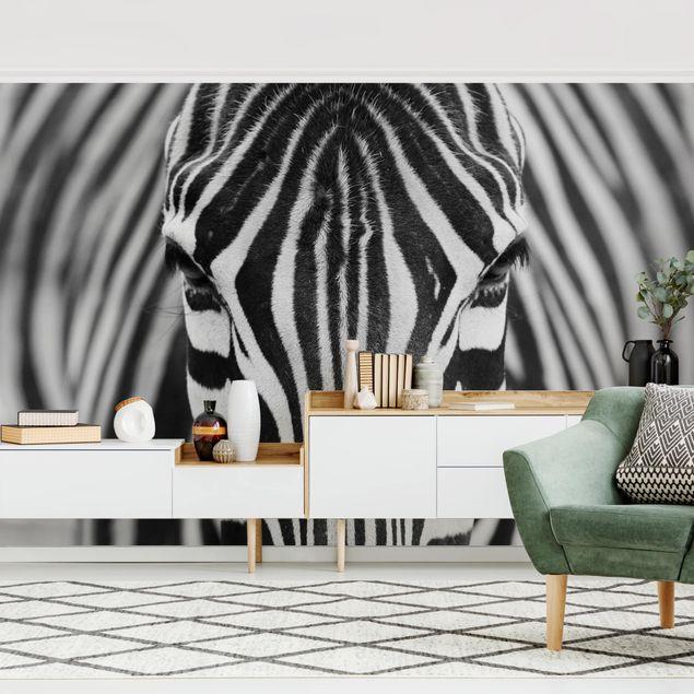 Fototapete - Zebra Look