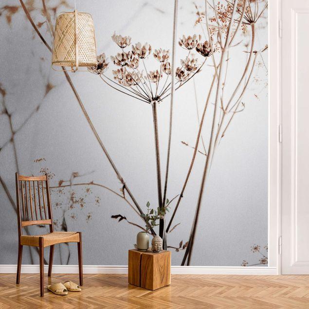 Metallic Tapete - Trockenblume im Lichtspiel
