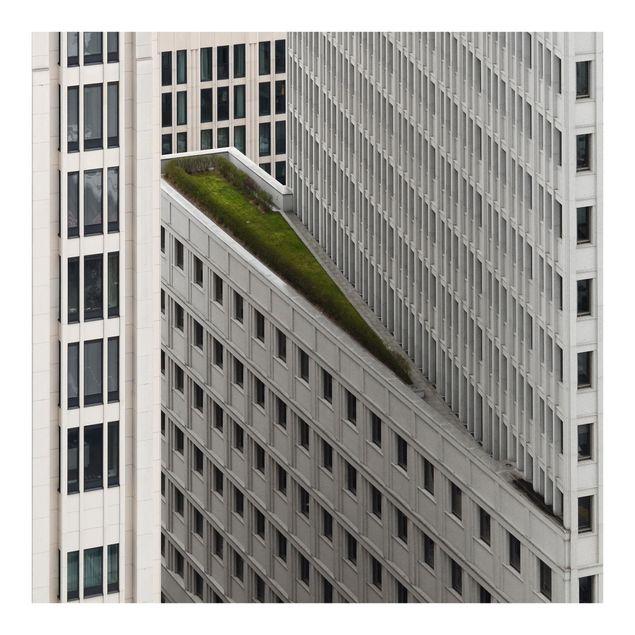 Fototapete Das grüne Element