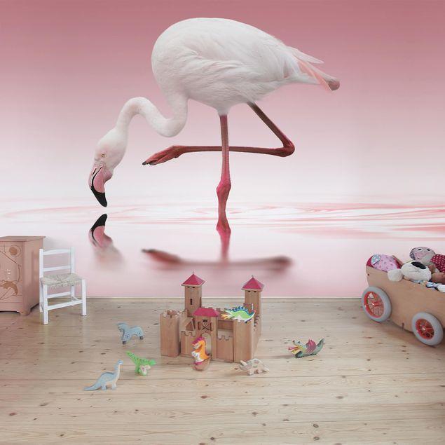 Fototapete Flamingo Dance