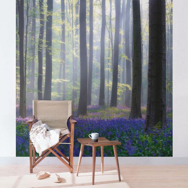 Fototapete Frühlingstag im Wald
