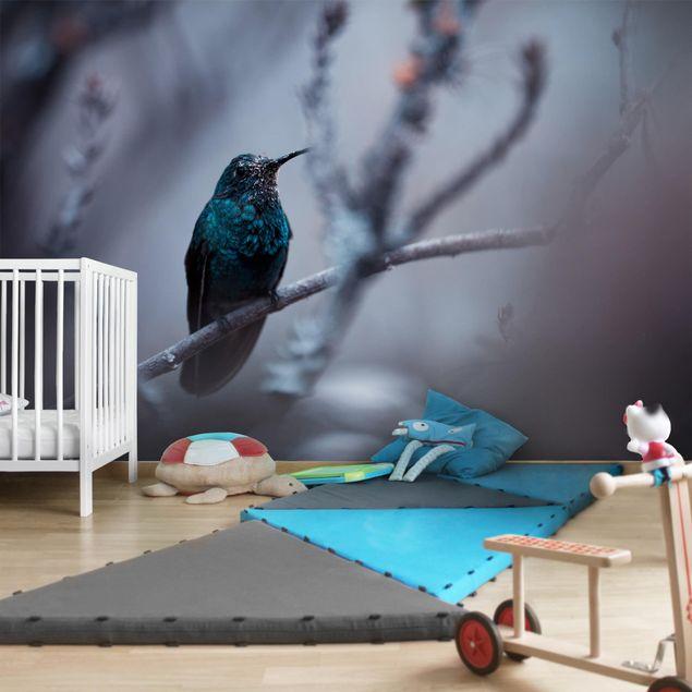 Fototapete Kolibri im Winter