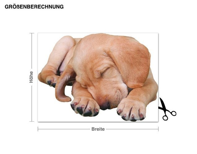 Wandtattoo Müder Labrador