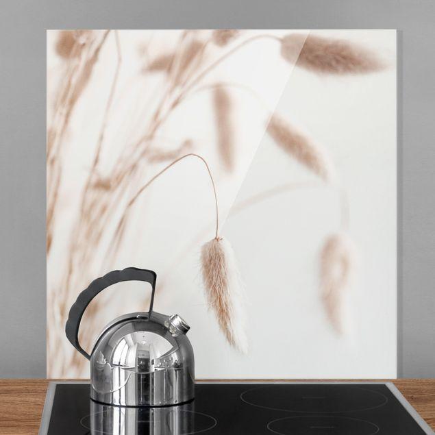 Spritzschutz Glas - Zartes Glanzgras - Quadrat 1:1