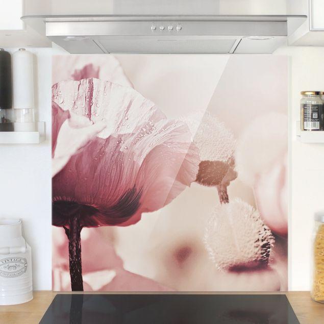 Spritzschutz Glas - Zartrosane Mohnblüte mit Wassertropfen - Quadrat 1:1